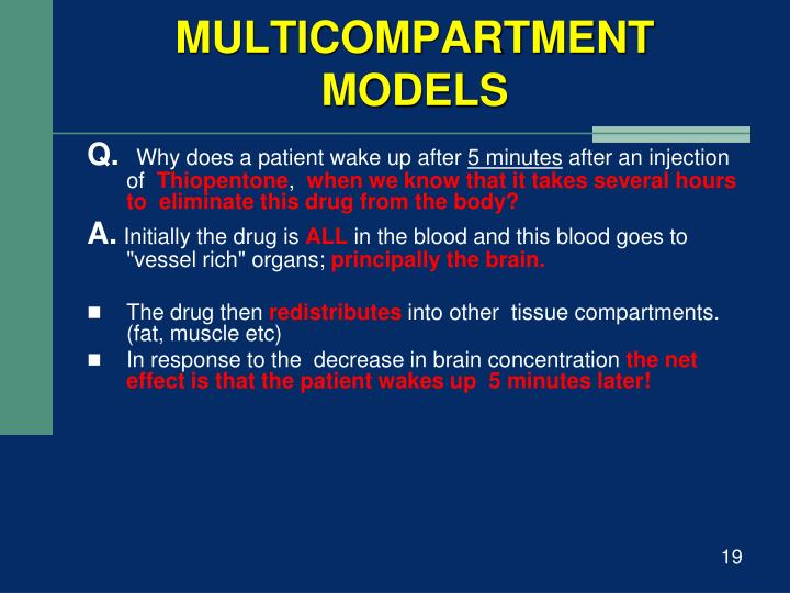 MULTICOMPARTMENT MODELS