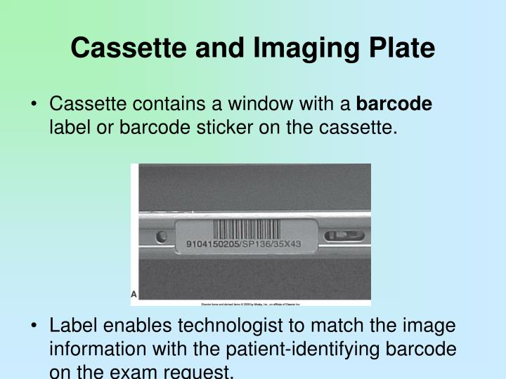 Cassette and Imaging Plate