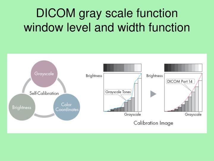 DICOM gray scale function