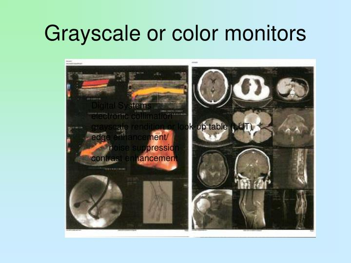 Grayscale or color monitors