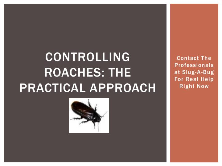 controlling roaches the practical approach n.