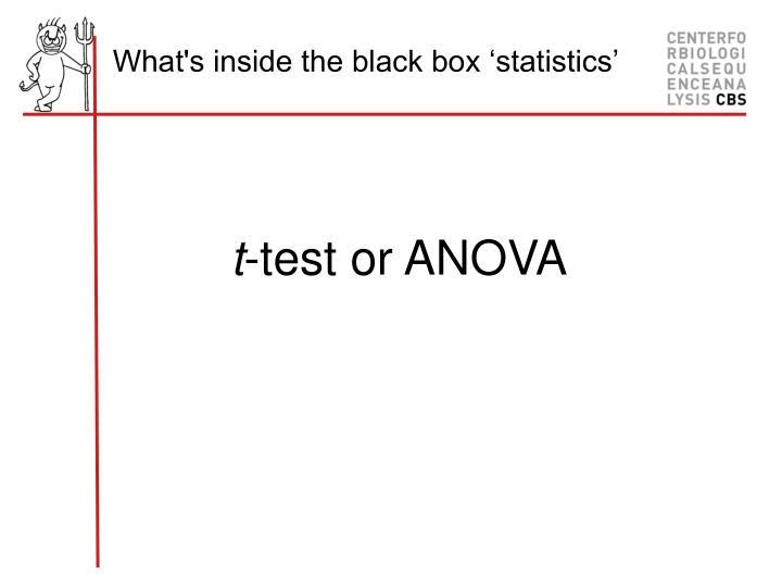 What's inside the black box 'statistics'