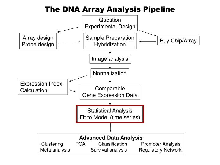 The dna array analysis pipeline