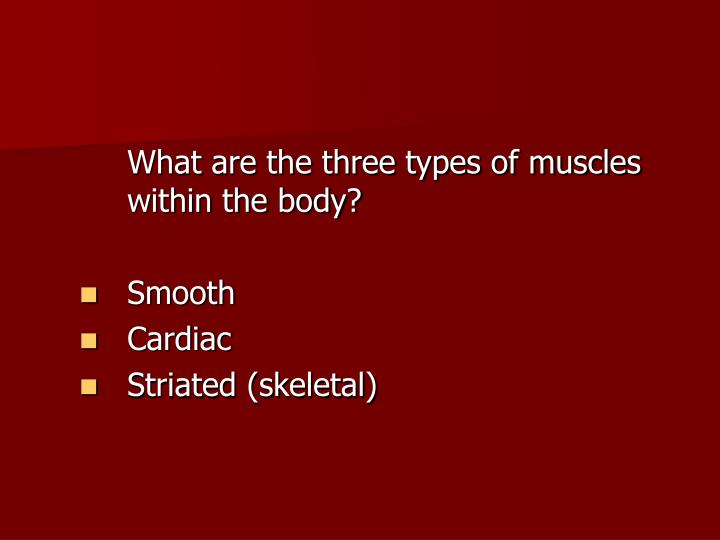 What are the three types of muscles within the body?