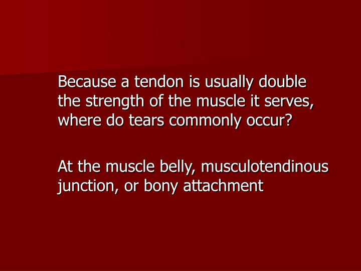 Because a tendon is usually double the strength of the muscle it serves, where do tears commonly occur?