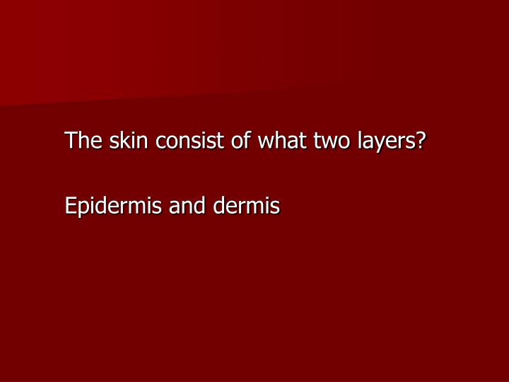 The skin consist of what two layers?