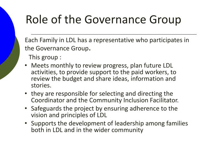 Role of the Governance Group