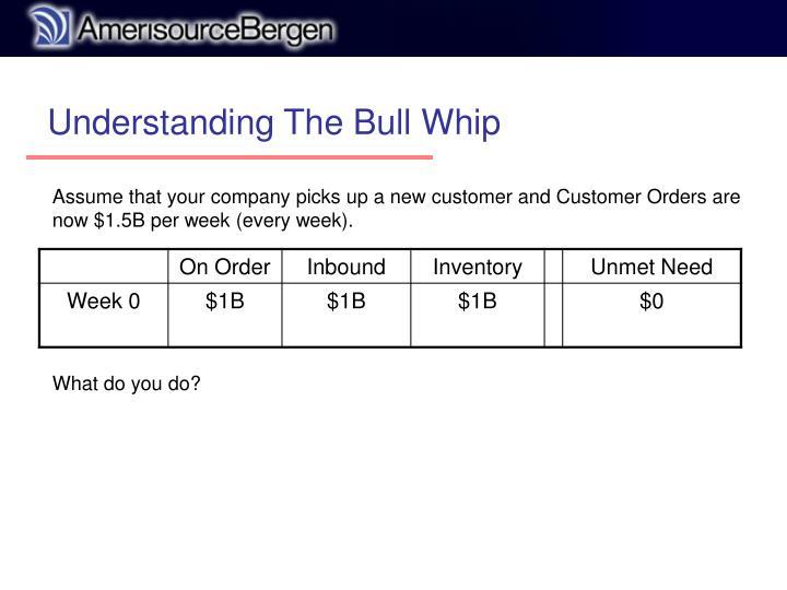 Understanding The Bull Whip