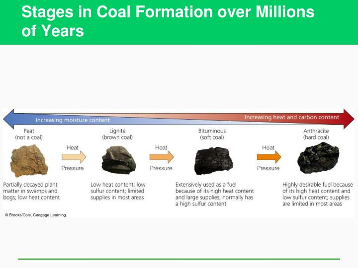 Stages in Coal Formation over Millions