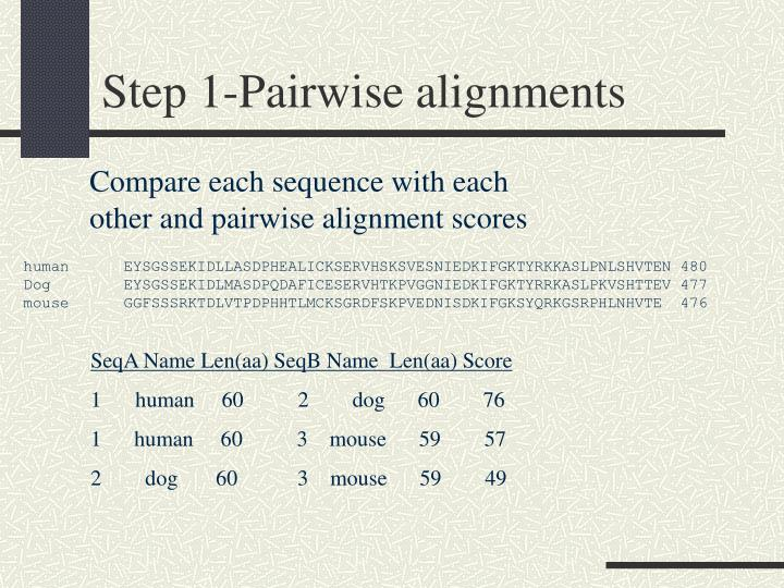 Step 1-Pairwise alignments