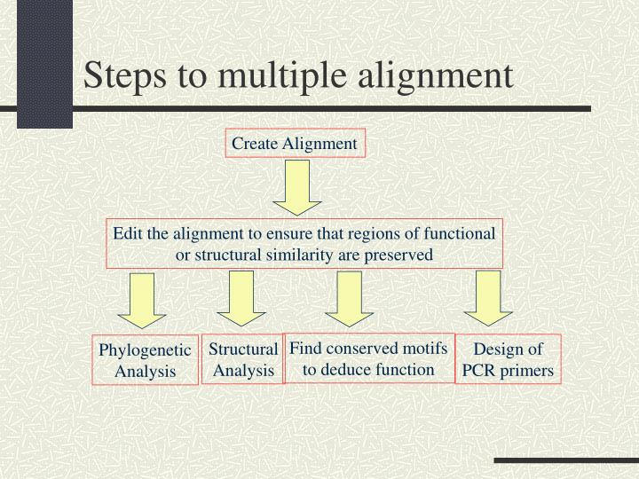 Steps to multiple alignment