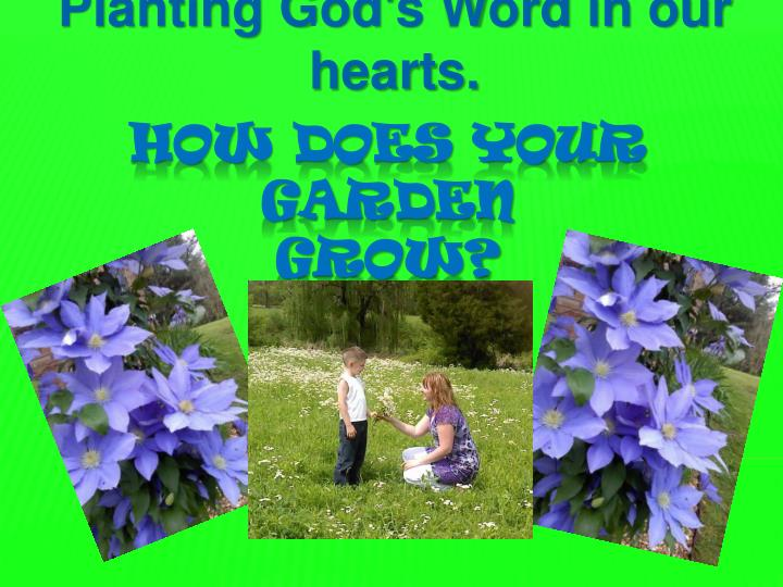 Planting god s word in our hearts