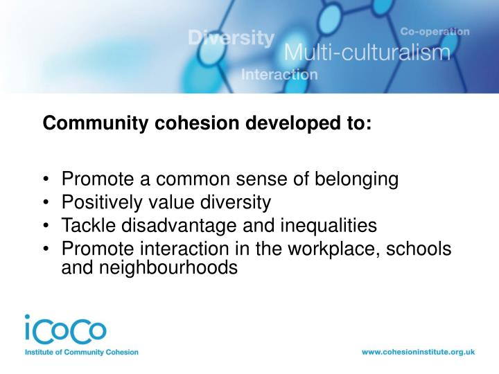 Community cohesion developed to: