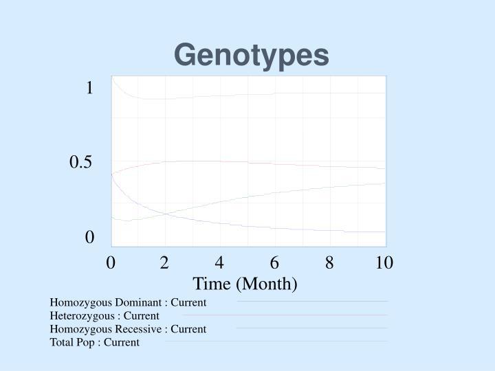 Genotypes
