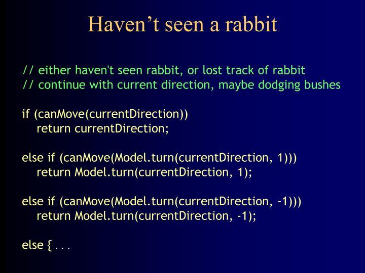 Haven't seen a rabbit