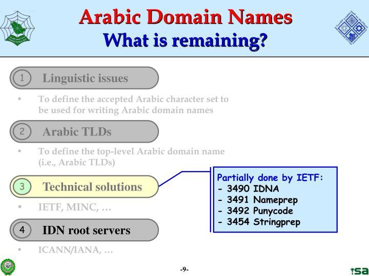 Arabic Domain Names