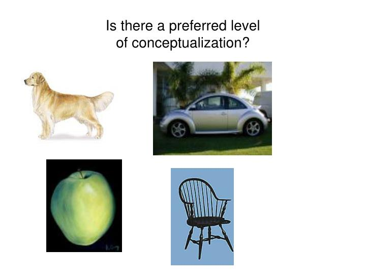 Is there a preferred level of conceptualization