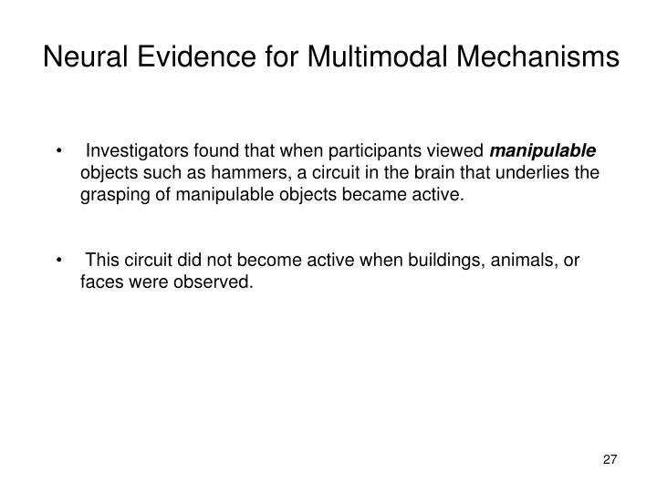 Neural Evidence for Multimodal Mechanisms
