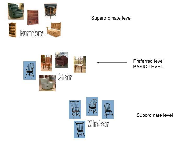 Superordinate level