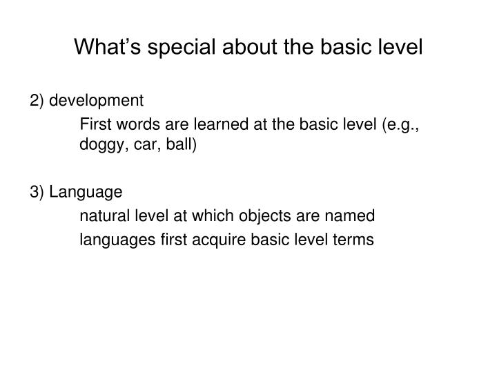 What's special about the basic level
