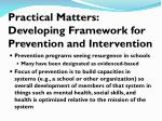 practical matters developing framework for prevention and intervention
