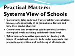 practical matters systems view of schools1