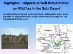 highlights impacts of well rehabilitation on wild ass in the gobi desert