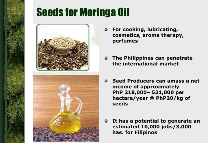 Seeds for Moringa Oil
