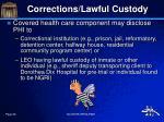 corrections lawful custody