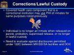 corrections lawful custody2