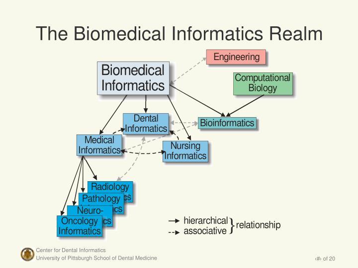 The Biomedical Informatics Realm