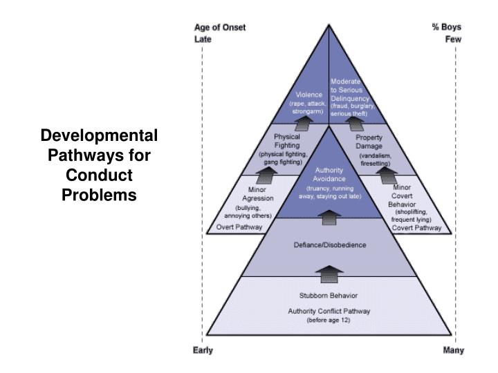 Developmental Pathways for Conduct Problems