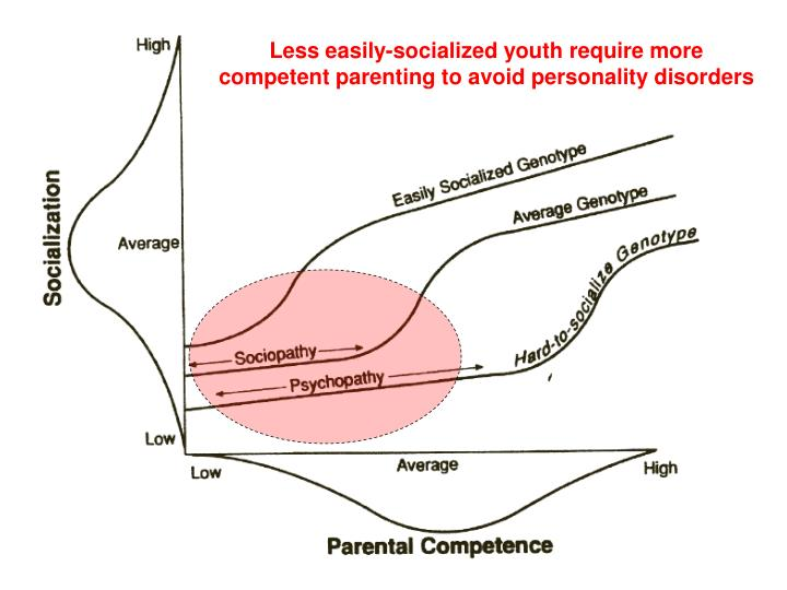 Less easily-socialized youth require more competent parenting to avoid personality disorders