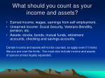 what should you count as your income and assets