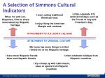 a selection of simmons cultural indicators