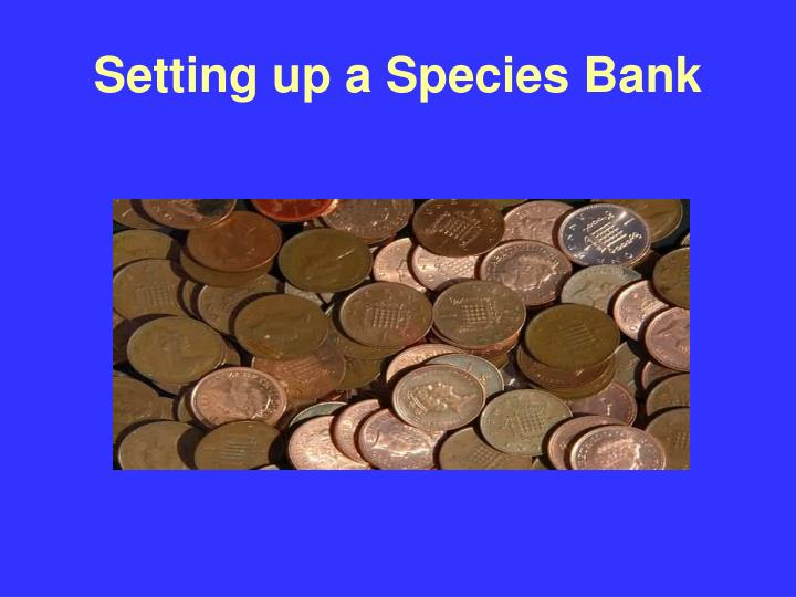 Setting up a Species Bank