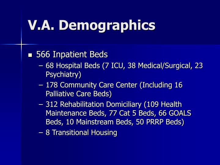 V.A. Demographics