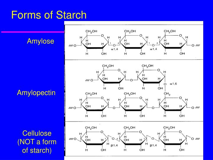 Forms of Starch