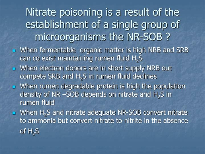 Nitrate poisoning is a result of the establishment of a single group of microorganisms the NR-SOB ?