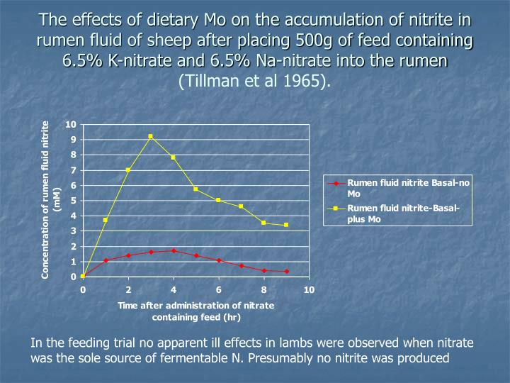 The effects of dietary Mo on the accumulation of nitrite in rumen fluid of sheep after placing 500g of feed containing 6.5% K-nitrate and 6.5% Na-nitrate into the rumen