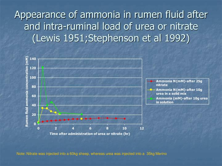 Appearance of ammonia in rumen fluid after and intra-ruminal load of urea or nitrate (Lewis 1951;Stephenson et al 1992)