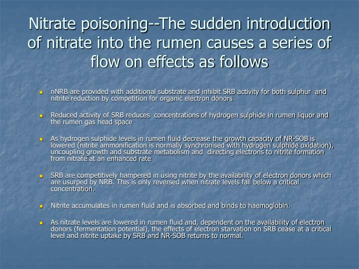 Nitrate poisoning--The sudden introduction of nitrate into the rumen causes a series of flow on effects as follows