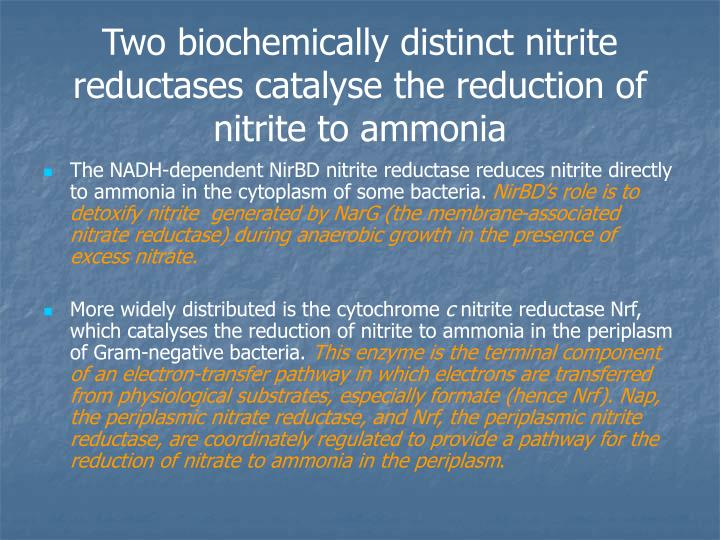 Two biochemically distinct nitrite reductases catalyse the reduction of nitrite to ammonia