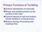 primary functions of tumbling