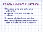 primary functions of tumbling1
