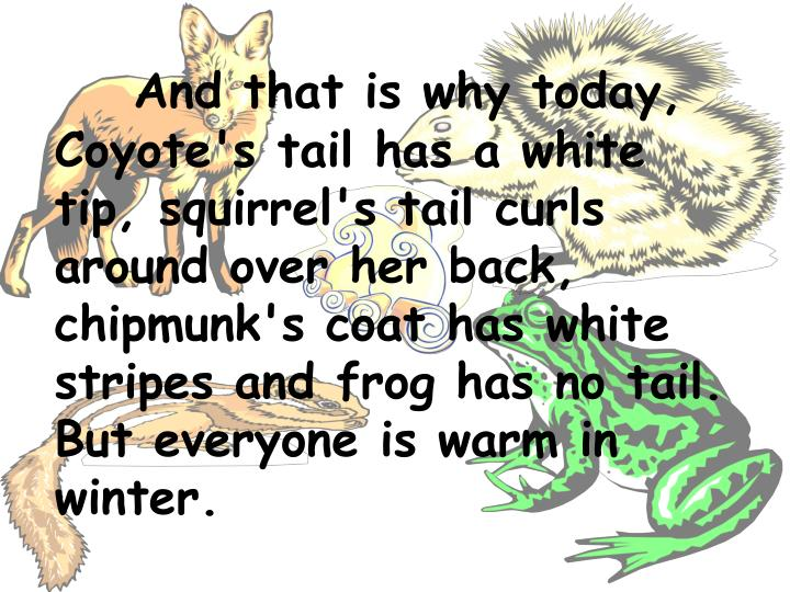 And that is why today, Coyote's tail has a white tip, squirrel's tail curls around over her back, chipmunk's coat has white stripes and frog has no tail. But everyone is warm in winter.