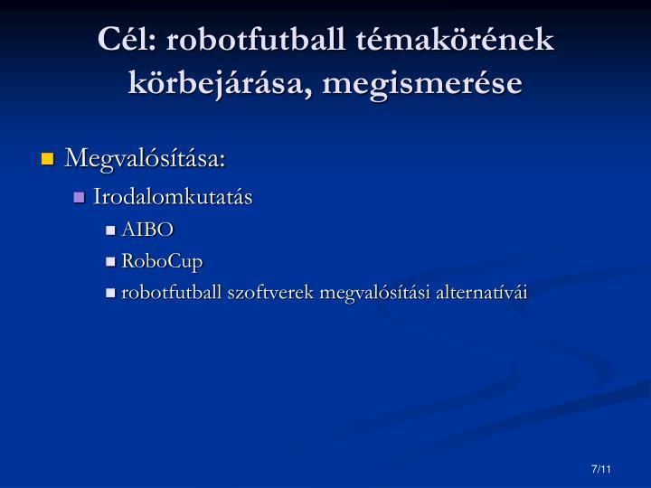 Cél: robotfutball témakörének körbejárása, megismerése
