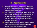 b aggregations