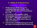 b kinds of archaebacteria