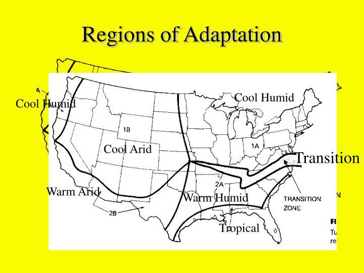 Regions of Adaptation